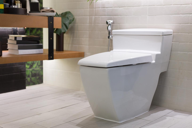 modern-toilet